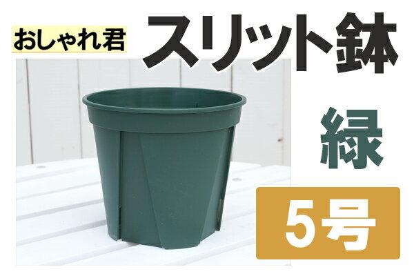 スリット鉢おしゃれ君スリット 鉢 5号 【資材】スリット 鉢 ロング
