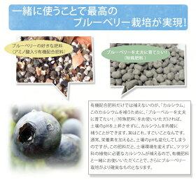 ブルーベリーの肥料【ブルーベリーがおいしくなる肥料】(2kg)果樹の有機肥料