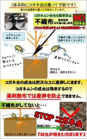コガネムシ幼虫防止不織布