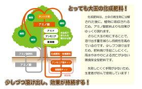 花ひろばIB肥料元気玉!(2kg)【資材】バラ果樹庭木の肥料化成肥料