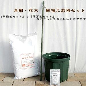 初心者向け♪ 果樹・花木鉢植え栽培セット【資材】 果樹苗
