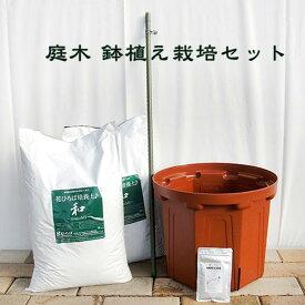 初心者向け♪ 庭木鉢植え栽培セット【資材】