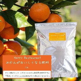 おいしい果実を作る源