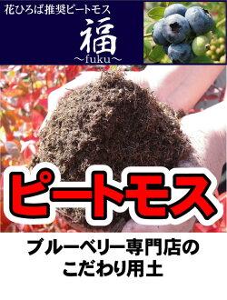 """北海道泥炭藓类泥炭苔藓蓝莓专柜""""福""""(20 L) 土壤改良材料土壤调理剂 — — 蓝莓"""