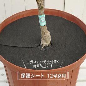 コガネムシの幼虫予防カバー 12号用 (直径39cm) 雑草・ネキリムシの防止不織布 【資材】 【ネコポス対応可能】