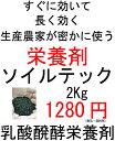 ソイルテック2.0kg 乳酸発酵栄養剤【資材】