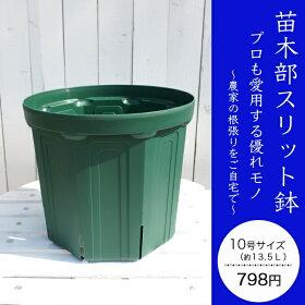 苗木部スリット鉢緑10L798円
