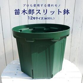苗木部スリット鉢緑12L2200円