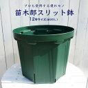 苗木部スリット鉢 (12号)【資材】