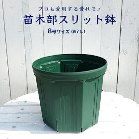 苗木部スリット鉢緑8L