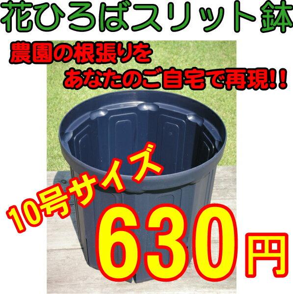 花ひろばスリット鉢(10号)【資材】
