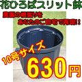 花ひろばスリット鉢緑240