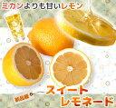 オレンジ スイートレモネード