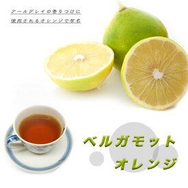 オレンジ 苗木 【 ベルガモット 】 (バロチン)2年生 接ぎ木 ポット苗 柑橘 果樹 果樹苗木