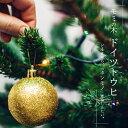 ■本物のクリスマスツリー■ ドイツトウヒ (オウシュウトウヒ) 根巻き苗庭木 モミノキ 【西濃運輸お届け】【北海道、沖縄、離島不可】