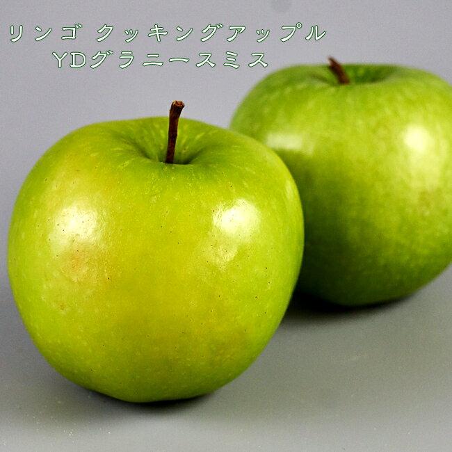 りんご 苗木 クッキングアップル YDグラニースミス 1年生 接ぎ木 苗 果樹 果樹苗木 リンゴ