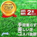 ■送料無料■ 芝生 鳥取県産 高麗芝 TM9 (ティーエムナイン) 2束セット 【生産販売】 【予約販売】【2017年9月下旬頃お届け予定】