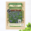 【有機種子】 コーンフラワー/矢車菊(青色) Sサイズ 150粒 種蒔時期 9〜10月、冷地:3月