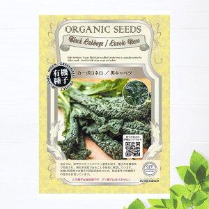 【有機種子】 黒キャベツ/カーボロネロ Sサイズ 200粒 種蒔時期 2〜3月、6〜8月、冷地:4〜6月