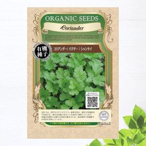 【有機種子】 コリアンダー/パクチー/シャンサイ Sサイズ 4g(約350粒) 種蒔時期 4〜7月、9〜10月