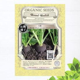 【有機種子】 大根(黒丸大根/ブラックスバニッシュラウンド) Sサイズ 3.3g(約520粒) 種蒔時期 3〜4月、9〜10月