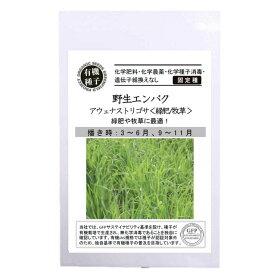 【有機種子】野生エンバクアウェナストリゴサ(緑肥/牧草)S20g種蒔時期3〜6月、9〜11月