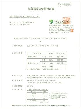 放射能測定結果報告書