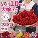 バラの花束 結婚記念日 誕生日のプレゼントに大輪 薔薇を。プロポーズや還暦 退職祝いにも(20本〜)