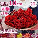 【結婚記念日】に バラの花束 誕生日のプレゼントに大輪 薔薇を。プロポーズや還暦 退職祝いにも(20本〜)