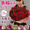 スプレーバラの花束 記念日 プロポーズのプレゼントに。退職 送別 還暦のお祝いにも 送料無料(15本)