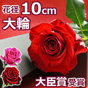 結婚記念日 バラの花束(一輪 ボックス 1本 一本 1輪 薔薇)誕生日 プレゼント 妻 両親 プロポーズ