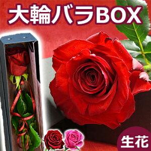 結婚記念日 バラの花束(一輪 ボックス 1本 一本 1...