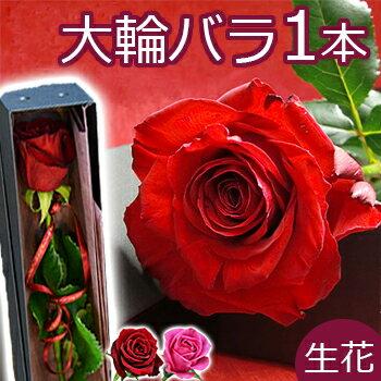 大輪 バラ 花束 一輪BOX 結婚記念日 誕生日 プレゼント 妻 バレンタイン ボックス プロポーズ 1本 一本 1輪 薔薇 箱入り 両親
