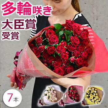 スプレーバラの花束 誕生日 プレゼント 結婚記念日 妻 プロポーズ 薔薇 本数指定 7本〜