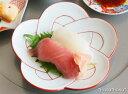 梅結び 銘々皿 (赤線) 15cm 有田焼 幸楽窯// 和食器 食器 正月 キャッシュレス 還元