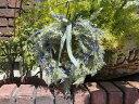 リース 玄関 フラワー オリーブ 造花 母の日ガーデニング ガーデン 雑貨 アンティーク【花遊び】『ハートラベンダーリース』