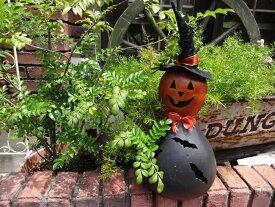 ハロウィン かぼちゃ パンプキン オーナメントガーデニング ガーデン アンティーク 送料無料【花遊び】『ジャックランタン バッドトールハット』