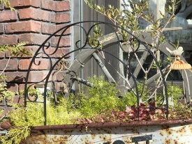 ガーデン 雑貨 ガーデニング フェンス アンティーク【NEW】『アーチ!ガーデンピック』