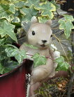 ぶたブタピッグアニマルプランター寄せ植え樹脂雑貨ガーデニングガーデン【花遊び】ピッグエンジェルハンギング