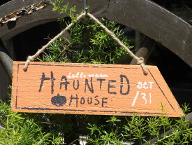 ハロウィン かぼちゃ パンプキン オーナメント『ホーンテッドウッドオレンジプレート』