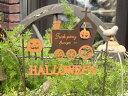 ハロウィン かぼちゃ パンプキン オーナメント【花遊び】【NEW】『クレイジーパンプキンレールウェイピック』