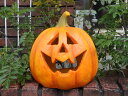 ハロウィン かぼちゃ ガーデニング ガーデン『パンプキン ジャックランタン・L』