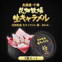 北海道 お土産 花畑牧場 生キャラメル 極 -きわみ- ×3個セット