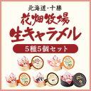 北海道 お土産 花畑牧場 生キャラメル5種5個セット【送料込み】