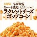 北海道 お土産 花畑牧場 ラクレットチーズポップコーン 50g(袋)