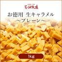 北海道 お土産 花畑牧場【お徳用】生キャラメルプレーン 1kg