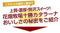 花畑牧場十勝カタラーナ〜濃厚焼きプリン〜(260g)北海道お土産