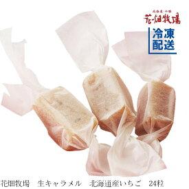 花畑牧場 生キャラメル 北海道産いちご24粒【冷凍配送】