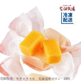花畑牧場 生キャラメル 北海道産メロン24粒【冷凍配送】