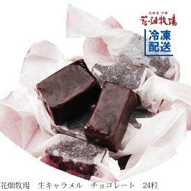★楽天スーパーセール★花畑牧場 生キャラメル チョコレート24粒【冷凍配送】